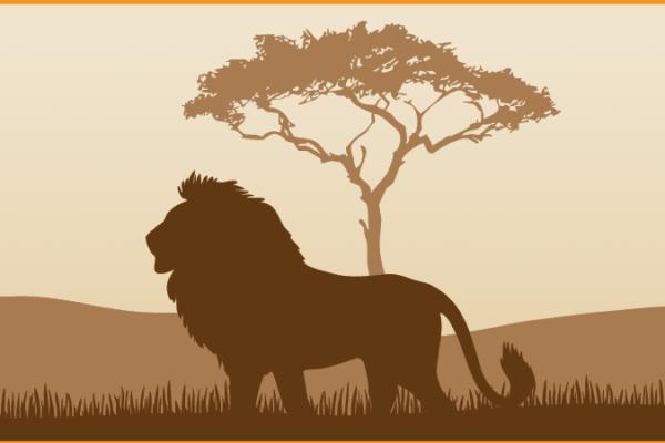 8c-africa-brown-copy